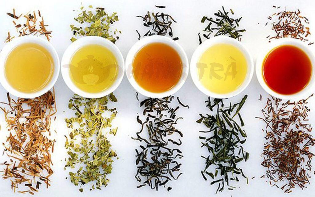 các loại trà ngon